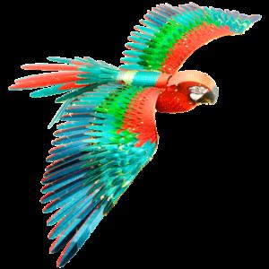 Premium Series Parrot